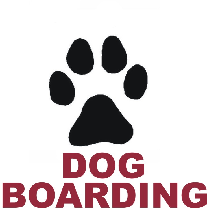 Dog Boarding Salary